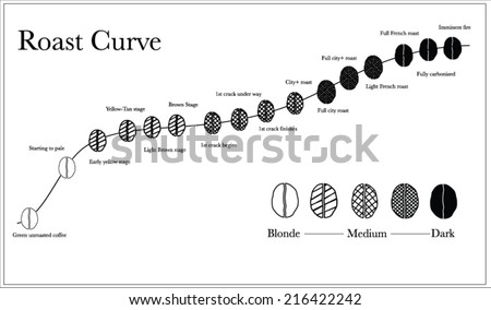 coffee roast graph : black and white - stock vector
