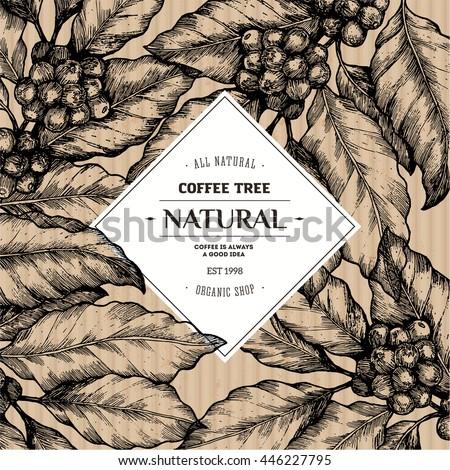Coffee Tree Illustration Engraved Style Illustration Stock ...