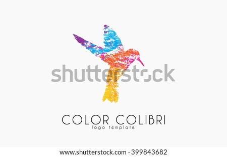 Colibri logo. Color colibri. Bird logo. Creative bird - stock vector