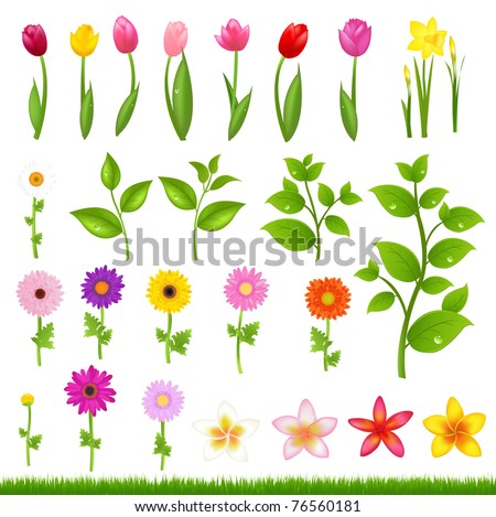 Collection Beautiful Flowers And Grass, Isolated On White Background, Vector Illustration - stock vector