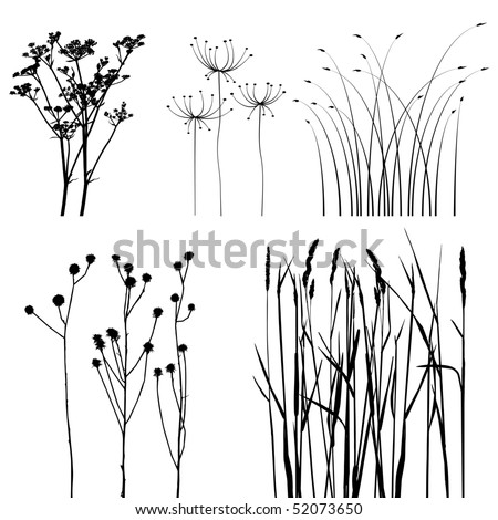 collection, for designers, plant vector - stock vector