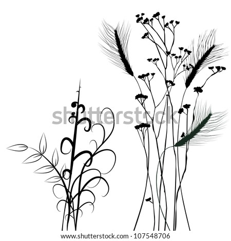 Collection for designers, plant vector - set - stock vector