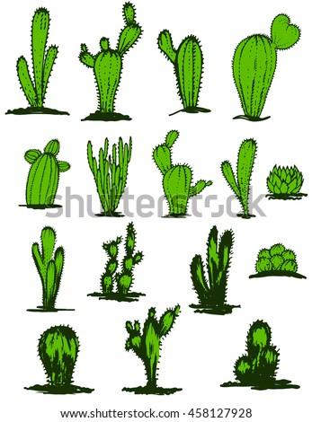 Collection Hand Drawn Green Cacti Vector Stock Vector