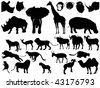 collection of African animals - stock vector
