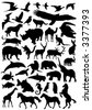 Collection of animal vector silhouettes - stock photo
