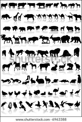 collection of animals vector silhouette