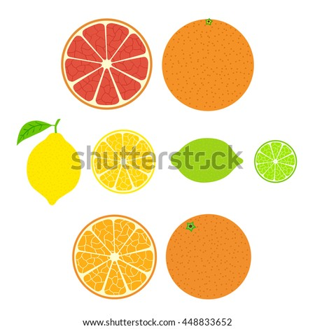 Collection of citrus. Slices of orange, lemon, lime and grapefruit, icons set, colorful isolated on white background, vector illustration.