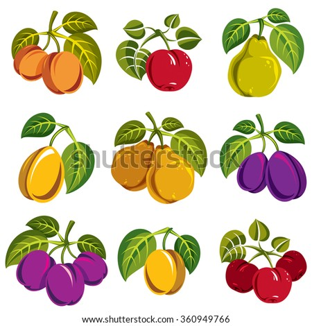 Collection of 3d simple fruits vector icons with green leaves, harvest season symbols. Apricots, plums, pears, apples and cherries isolated design elements. - stock vector
