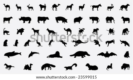 collection of different animals silhouettes - stock vector