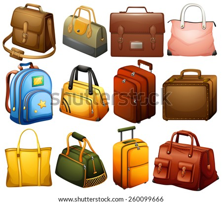 Collection of different bags on a white background