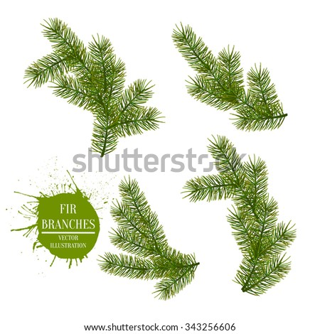 Collection of Fir Branches. Set of Realistic Detailed Christmas tree branches. Symbol of Christmas and New Year isolated on white background for your design. Vector illustration - stock vector
