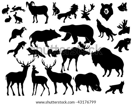 collection of forest animals - stock vector