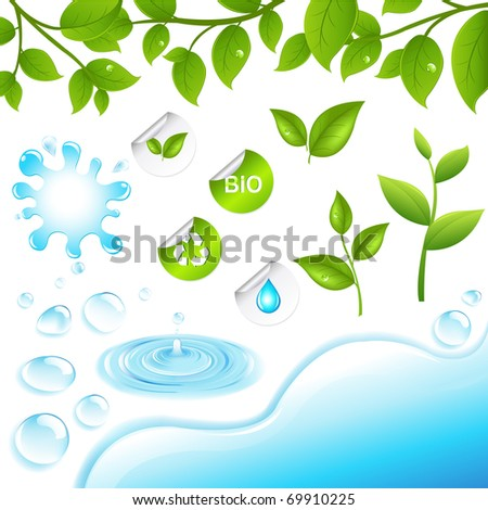 Collection Of Green Branches And Water Elements, Isolated On White Background, Vector Illustration - stock vector