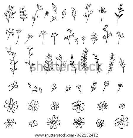 Collection of hand sketched flowers and leafs - stock vector