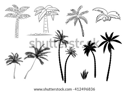 Collection of images of palm trees vector format. Line and silhouette of palm trees isolated on white background - stock vector