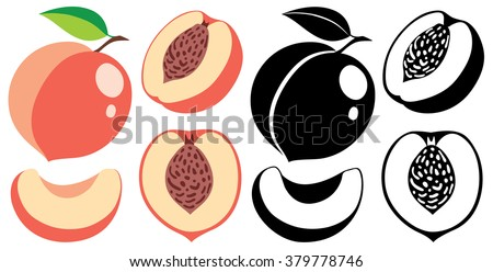 Collection of isolated cut and whole vector peaches in color and black and white - stock vector