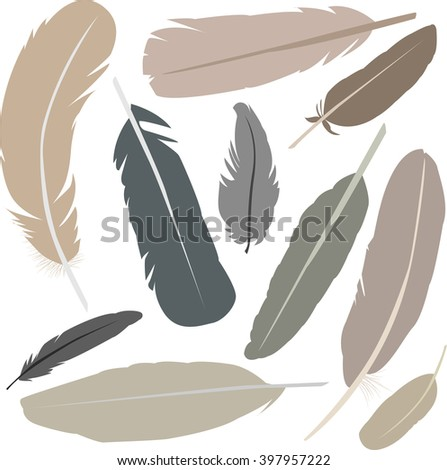 Collection of isolated flat style bird feathers set. Decoration pastel elements. Cool minimal vector illustration for print, web, poster, t-shirt