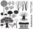 Collection of isolated stylized trees and other forest elements. Only some grunge shapes there created using tracing command, all other shapes are drawn manually. - stock vector