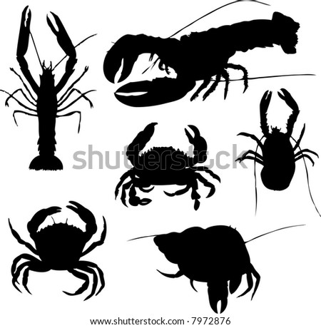 collection of lobsters - stock vector