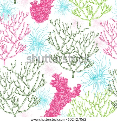 Collection of marine plants, corals and seaweed. Vintage seamless pattern with hand drawn marine flora. Vector illustration in line art style.
