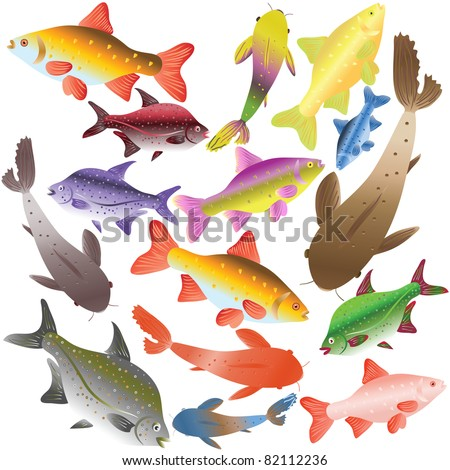 Collection of multi-colored fishes. Vector illustration - stock vector