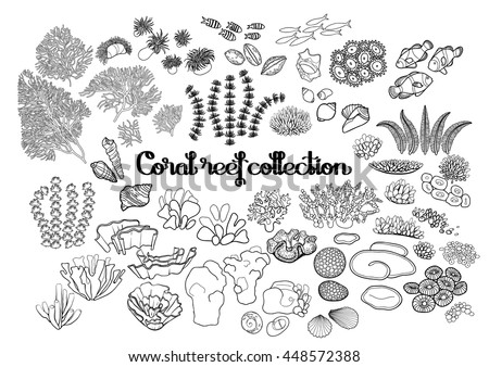 collection of ocean plants and coral reef elements drawn in line art style isolated on white - Coral Reef Coloring Pages Kids