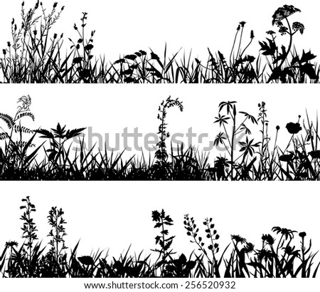 Collection of plants - stock vector