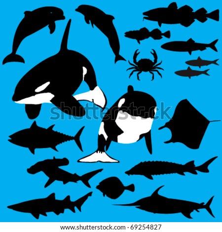 Collection of sea creatures vector silhouettes - stock vector