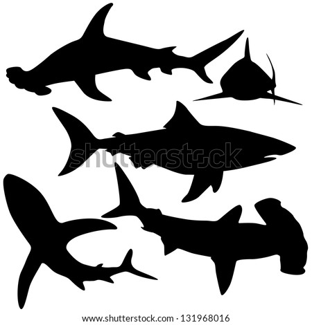 Collection of sharks isolated on white (Vector) - stock vector