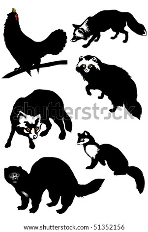 Collection of silhouettes of fur animals of the north and Alaska, a wood-grouse eps10 - stock vector