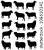 Collection of silhouettes of sheep - stock vector