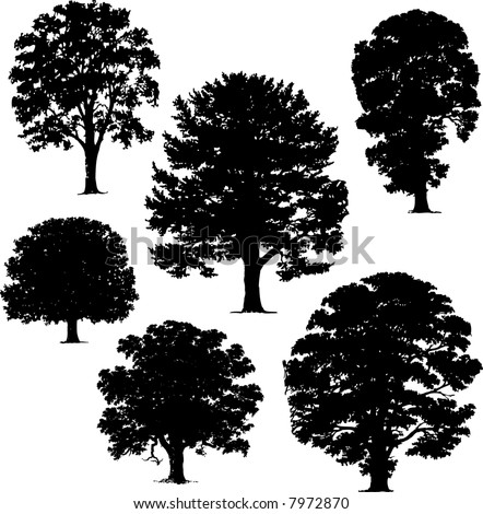 collection of silhouettes of trees - stock vector