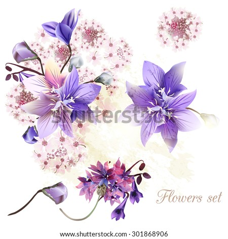 Collection of tender flowers watercolor style - stock vector