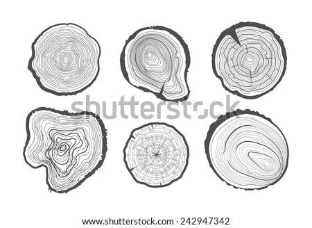 Collection of tree-rings. Vector graphics. - stock vector