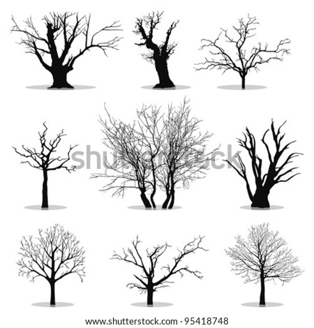Collection of trees silhouettes - stock vector