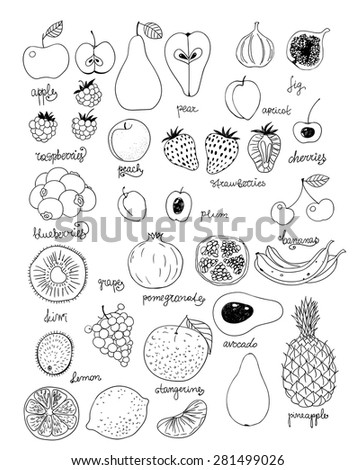 Collection of various fruits. Hand - drawn elements for design on white background. - stock vector