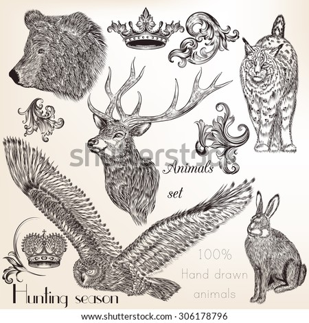 Collection of vector hand drawn animals - stock vector