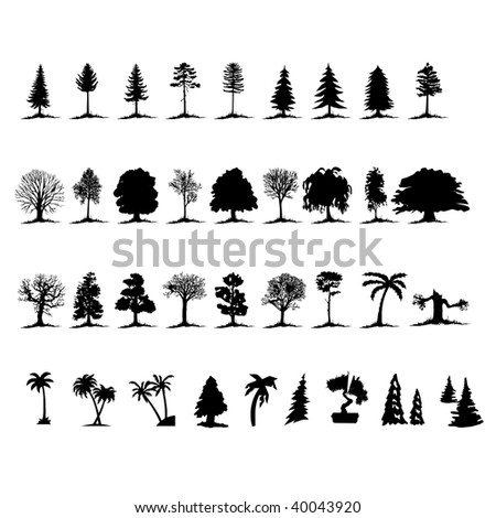 collection of vector illustration trees - stock vector