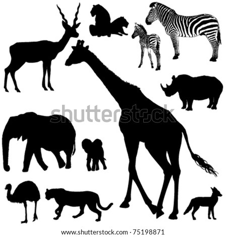 Collection of vector silhouettes of African animals - stock vector