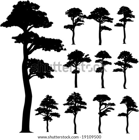collection (pine) vector trees - stock vector