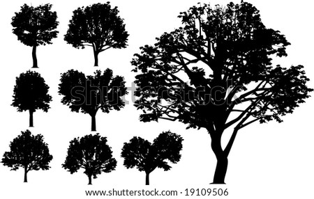 collection vector trees - stock vector