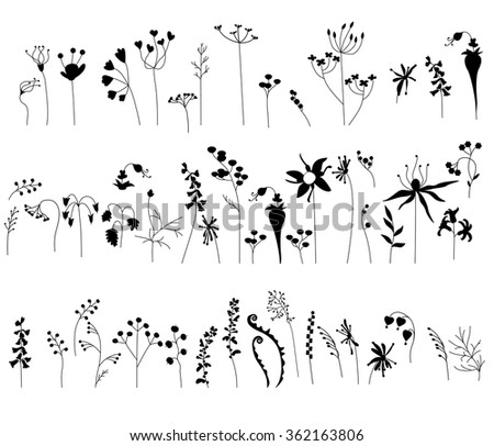 Collection with stylized forest flowers and herbs isolated on white. Black and white. Objects for your design, announcements, greeting cards, posters, advertisement. - stock vector