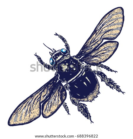 Color Bee Hand Drawn Isolated Insect Bumble With Wings On White Background Vector
