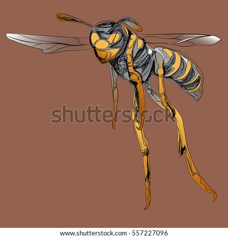 Color Bee, wasp flies forward painted in graphic style. Brown background