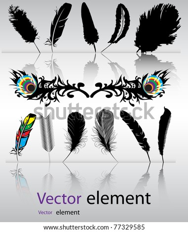 Color, black-and-white feather backgrounds. Vector format - stock vector