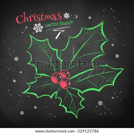Color chalk vector sketch of Christmas holly on black chalkboard background.  - stock vector