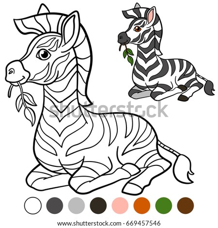 Color Me Zebra Mother Zebra Her Stock Vector 669457504