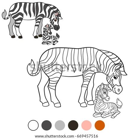 color me zebra mother zebra with her cute baby zebra