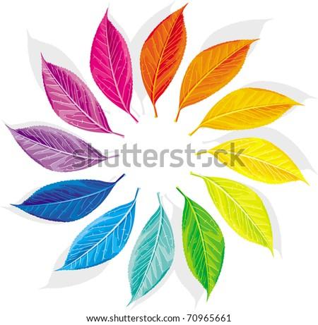 Color wheel as a dozen leaves - stock vector