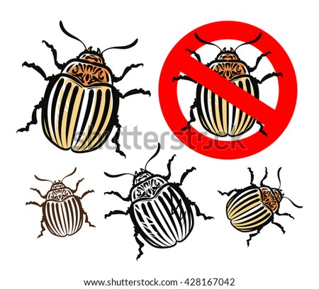 colorado potato beetle. insects. pest control. prohibitory sign. vector illustration - stock vector